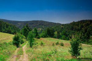 Piękny krajobraz w okolicach Sudeckiej Chatki w Gruszkowie