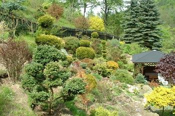 Wypoczynek koło Karpacza Sudecka Chatka Gruszków, widok ogródek z altanką wkoło piękna zieleń i widoki Sudecka Chatka Gruszków koło Karpacza