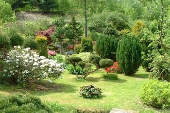 Wypoczynek koło Karpacza Sudecka Chatka Gruszków, widok na ogródek i piękną zieleń Sudecka Chatka Gruszków koło Karpacza